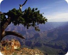 Eco Friendly Air Fresheners | My Air Freshener - Canyon View - My Air Freshener