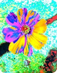 DELIGHTFUL Flower Air Freshener | My Air Freshener