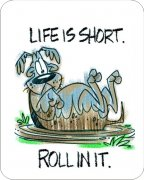Life Is Short Roll In It Dog Car Air Freshener | My Air Freshener
