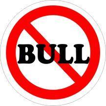 NO BULL Car Air Freshener | My Air Freshener