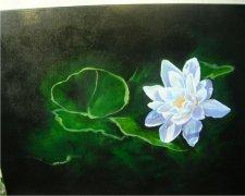 Water Lily Car Air Freshener | My Air Freshener