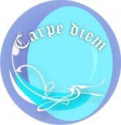 Carpe Diem Car Air Freshener   My Air Freshener