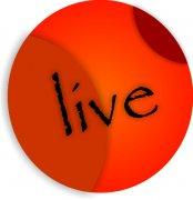 Circles of Life...Live  on a Car Air Freshener - My Air Freshener