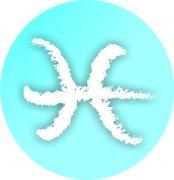 Pisces Zodiac Sign Air Freshener | My Air Freshener