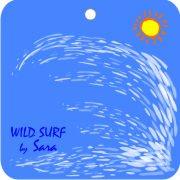 Eco Friendly Air Fresheners   My Air Freshener - Wild Surf   My Air Freshener