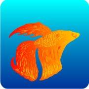 Eco Friendly Air Fresheners | My Air Freshener - Goldfish | My Air Freshener