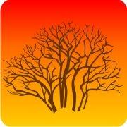 Eco Friendly Air Fresheners | My Air Freshener - Lone Tree - My Air Freshener