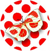 Lady in Red Butterfly