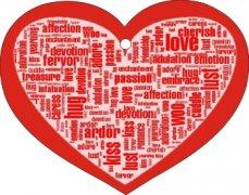 Custom Air Freshener Specials | Blend of Essential Oils - Red Heart | My Air Freshener