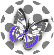 Sweet Mystery Butterfly Car Air Freshener | My Air Freshener