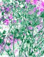 JOYFUL Flower Air Freshener